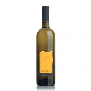 "Vino Bianco Frizzante ""Anricus"" - Santa Giustina"
