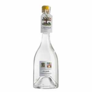 Distillato di Uva Moscato Giallo - Capovilla