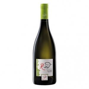 Alto Adige Pinot Grigio DOC 2017 - Josef Weger