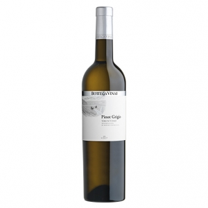 Trentino Pinot Grigio DOC 2017 - Bottega Vinai, Cavit