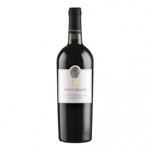 Delle Venezie Pinot Grigio IGT 2015 - Balan