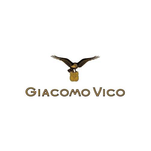 Image result for GIACOMO VICO LOGO
