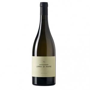 """Sicilia Sauvignon Blanc DOC """"Urra di Mare"""" 2017 - Mandrarossa"""