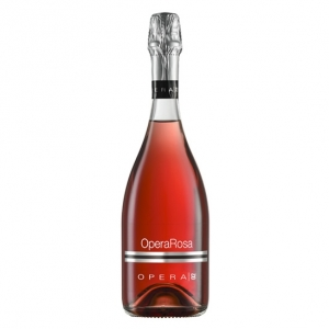 "Spumante Lambrusco Grasparossa di Castelvetro Rosé Brut DOP ""Opera Rosa"" 2016 - Opera 02"