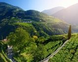 L'Alto Adige sotto i 15 euro
