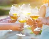 30 vini che ti illuminano l'estate
