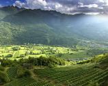 La Valtellina e i suoi vini